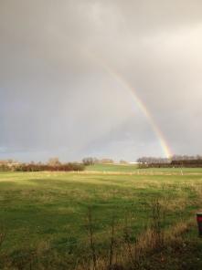 It's a rainbow!